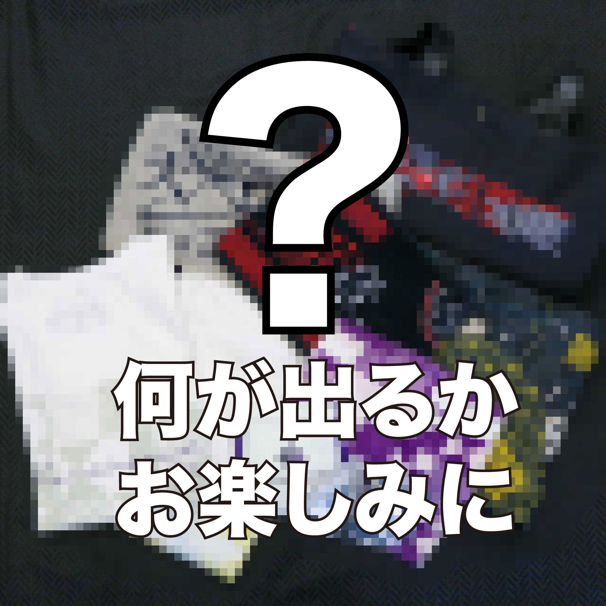 【1/3会場受取】福袋【大新年会2021】